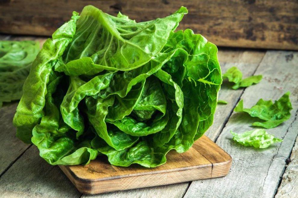 comment conserver la salade - astuces