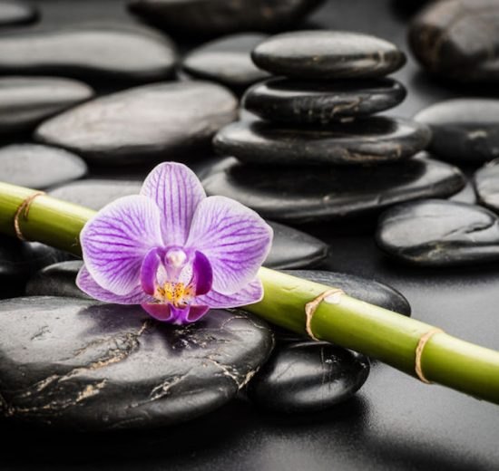 Tailler une orchidée