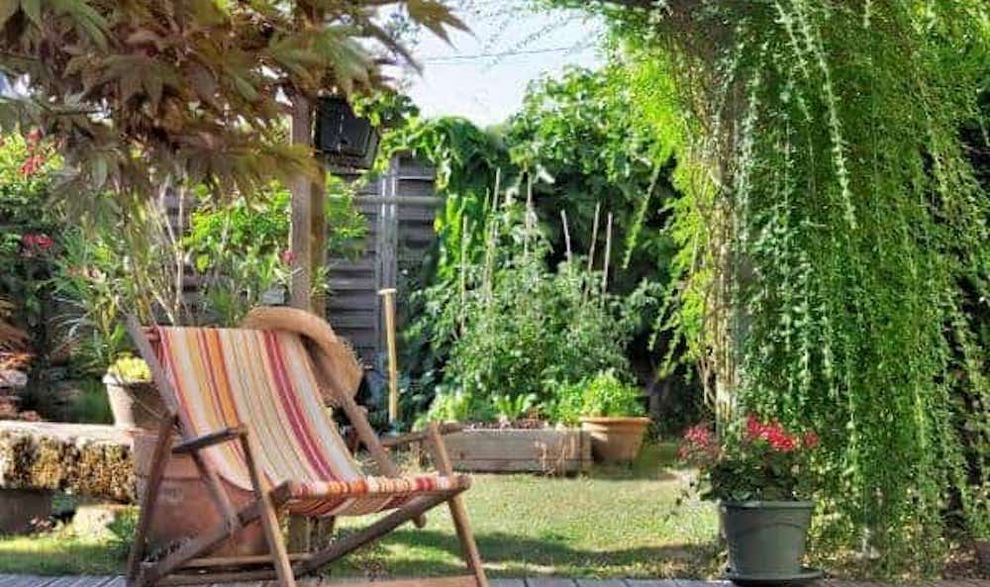 ombrager terrasse - les plantes